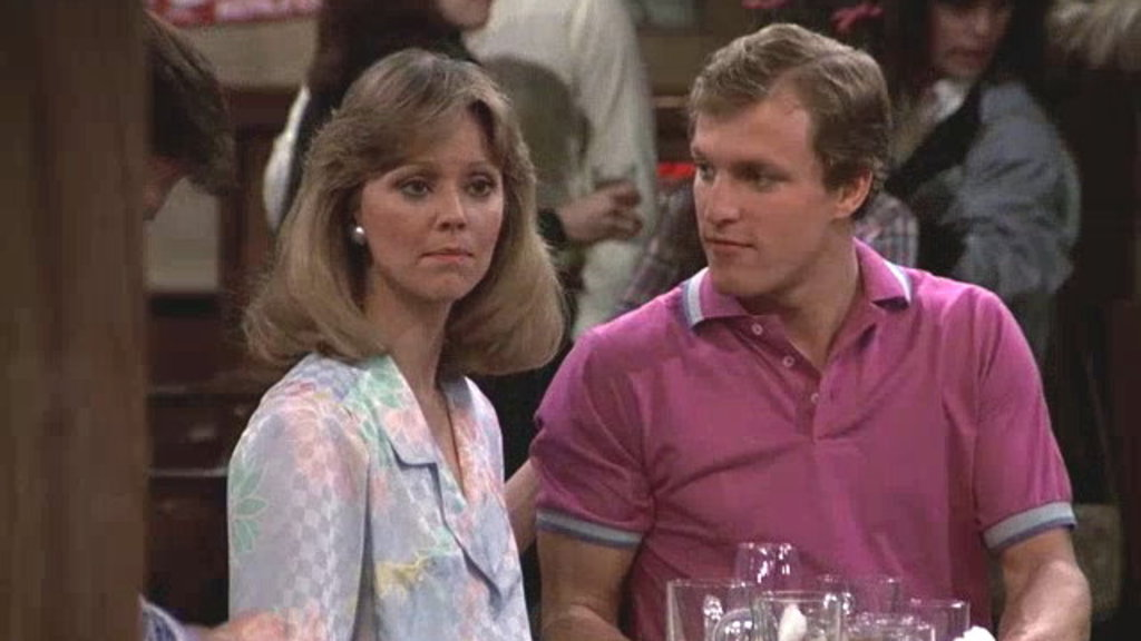 Image result for diane chambers