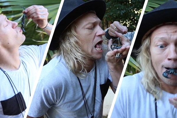 the dudesons this dude gets stung by a scorpion clip hulu